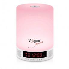 VIGAN BR1 Color bluetooth reproduktor 2v1